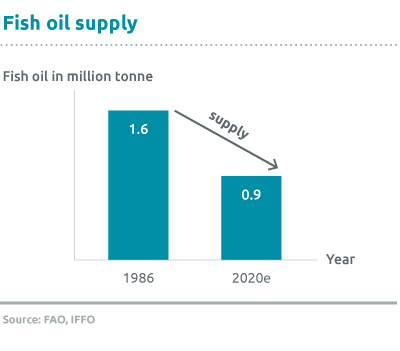 Fish-oil-supply