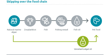Grafik_food-chain-shortcut_Pet_dog